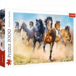 Galopujące stado koni 27098
