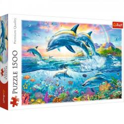 Rodzina delfinów 26162