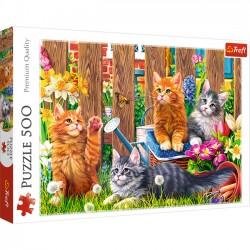 Kotki w ogrodzie 37326