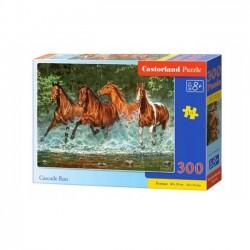 Castor Puzzle 300 B-030361 Cascade Run